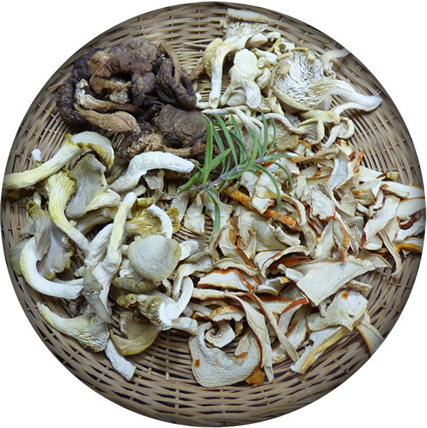 Champignons sauvages